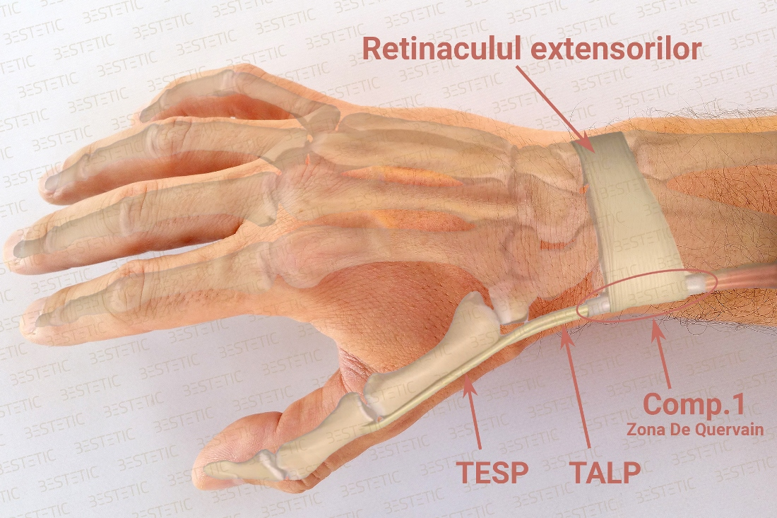 cum să tratezi inflamația articulației încheieturii)